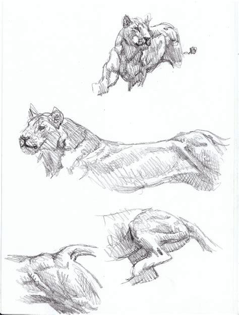 sketchbook big sabertooth diaries 3 big cat sketches chasing