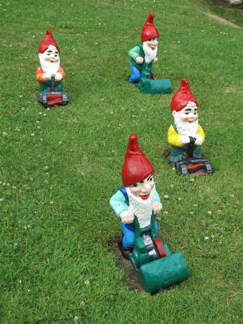 lawn gnome garden gnome gallery hgtv