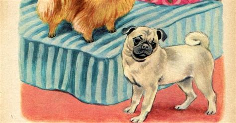 pugs and children pomeranian and pug illustrations by tibor gergely children s bk print st bernard