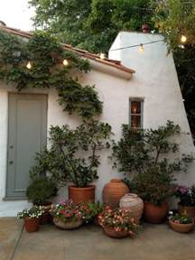 Patio Flowers by Potted Plants Beautiful Container Flowers Pinterest
