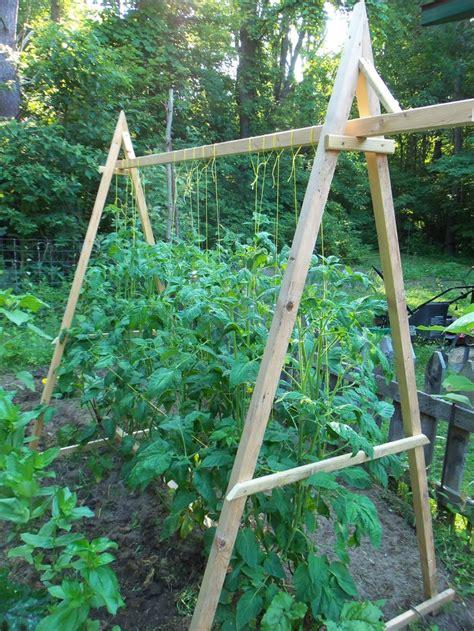 Tomato Wire Trellis tomato trellis living the land