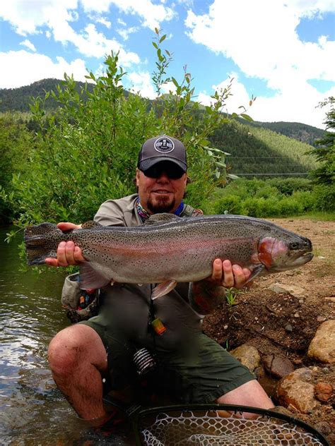 colorado fishing reports south platte fork south platte fishing report denver area fly