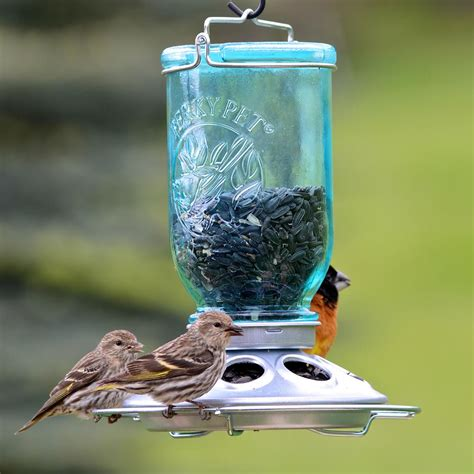 bird feeders pet jar bird feeder