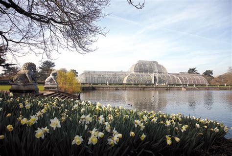 waterlily house  kew gardens  architectural statement   grounds encloses