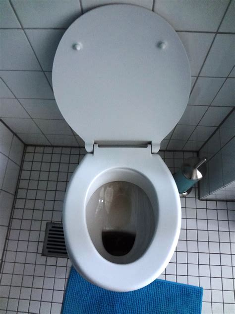 german word for bathroom german toilets the german way more
