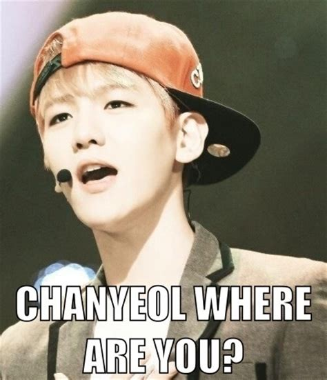 Exo Memes - exo images exo memes wallpaper and background photos