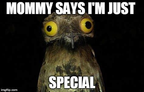 Special Meme - i m special imgflip