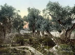 garden of gethsemane by granger