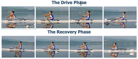 boat movement terms stroke terms commercial rowing club dublin