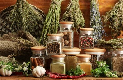 What Is The Shelf Of Dried Spices by Term Survival Foods Freeze Dried And Dehydrated Herbs Spices And Flavoring Survival