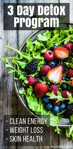 3 Day Detox Meal Plan Danette May by Best 25 3 Day Detox Ideas On Detox Cleanse