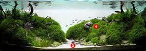 aquascaping guide aquascaping for beginners aquascape addiction