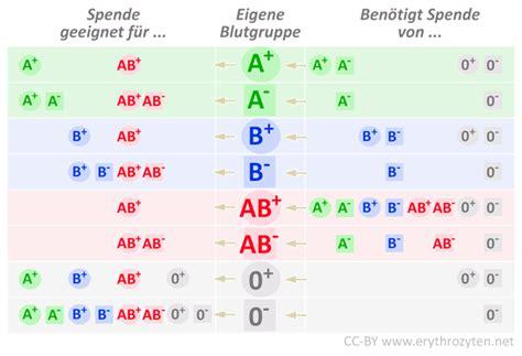 blutgruppen tabelle blutgruppe a