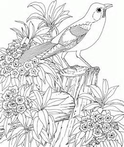 detailed coloring pages printable detailed coloring pages coloring home