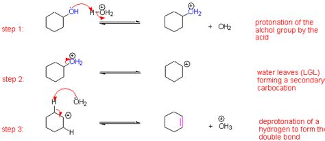 hydration of cyclopentene cyclohexanol dehydration www imgarcade