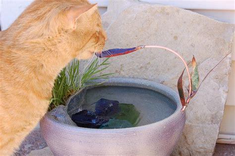 Handmade Water - the advent of the handmade cat