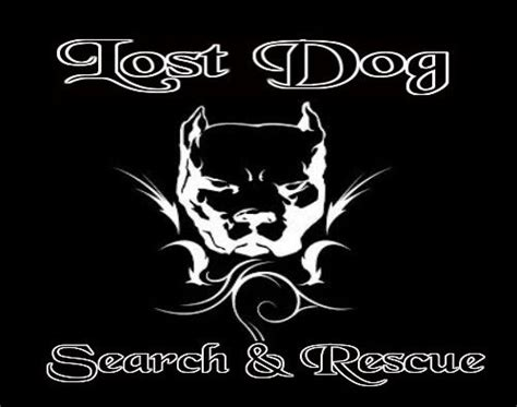 lost rescue lost my lost pet recovery county breeds picture