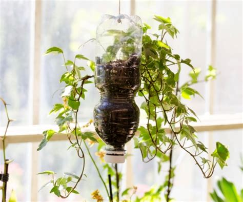 vasi con bottiglie di plastica riciclo creativo vasi con le bottiglie di plastica