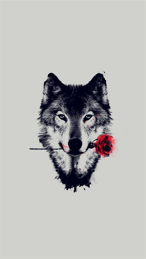 wolf backgrounds wolf wallpaper iphone 2018 iphone