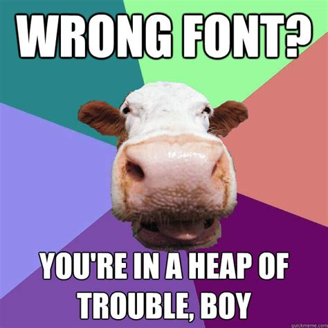 Meme Caption Font - wrong font you re in a heap of trouble boy meme police