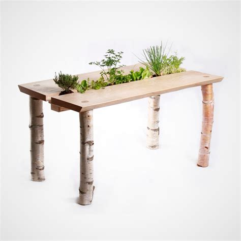Dining Table Plants Forage Dining Table By Forge Creative Homeli