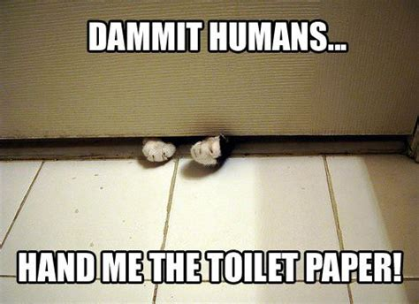 No Toilet Paper Jokes by Toilet Paper Jokes Quotes Quotesgram