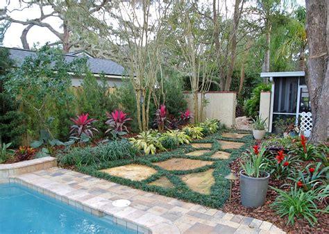 edible plants in your backyard 100 edible backyard plants delicious edible wild