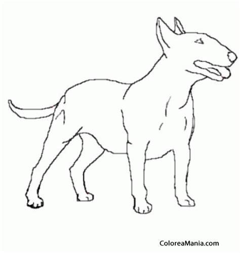 imagenes realistas para pintar colorear perro bull terrier de medio lado animales