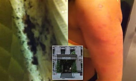astor on the park bed bugs manhattan s astor on the park hotel video shows mattress