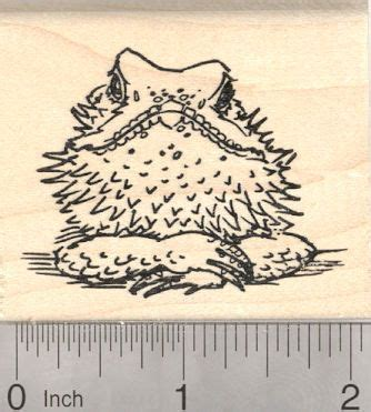 craft rubber sts australia 482 best images about silhouette cameo animals on