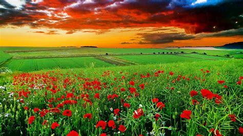 imagenes bonitas y paisajes imagenes de paisajes y frases de amor
