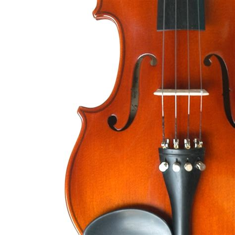 Suzuki Violin Nagoya Suzuki 220 Violin With Dominant Strings