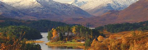 Lady Glen Affric by Glen Affric 28 Images Glen Affric Photograph By Gavin