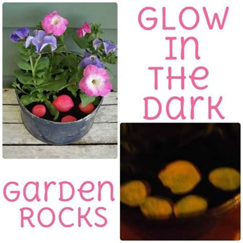 glow in the paint on rocks glow potted plants and rocks on