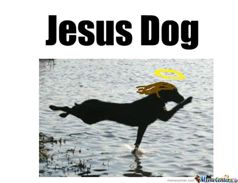 jesus in dogs jesus by lillyray meme center