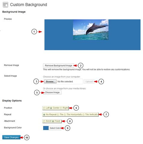 custom layout on wordpress customize wordpress background