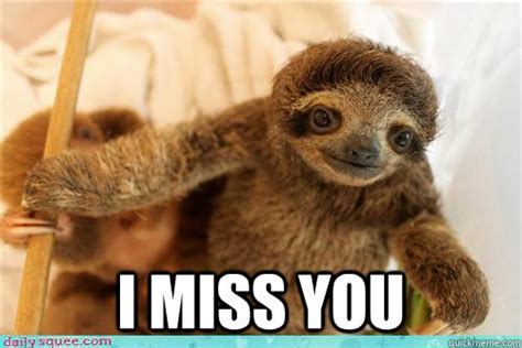Cute Sloth Meme - i miss you baby sloth memes quickmeme
