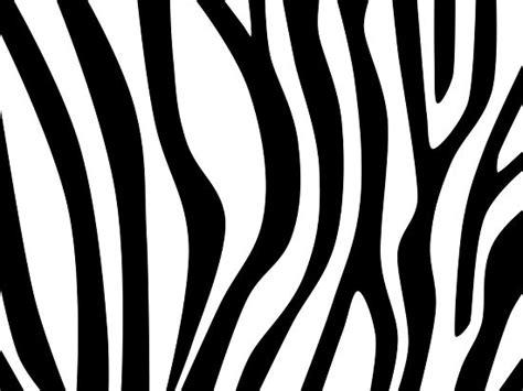 zebra pattern how to draw draw zebra stripes stenciling zebra stuff and craft