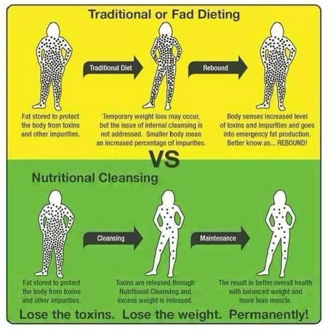 Cost Of Detox Fad by Traditional Or Fad Dieting Vs Nutritional Cleansing How