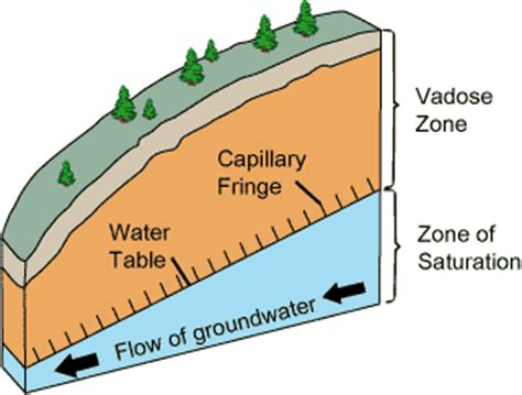 The Location Of The Water Table Is Subject To Change Vadose Zone