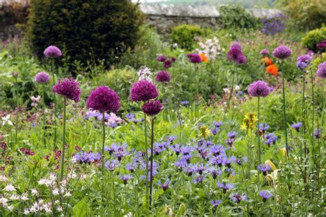 cottage garden planting gallery restored