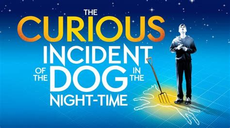 the curious incident of the in the nighttime the curious incident of the in the time at the gielgud theatre at the