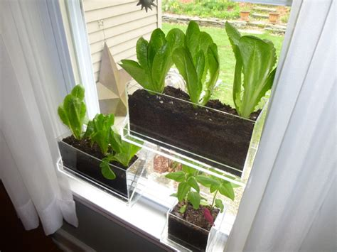 Window Planters Indoor by Living Ledge Specialty Vertical Garden Container