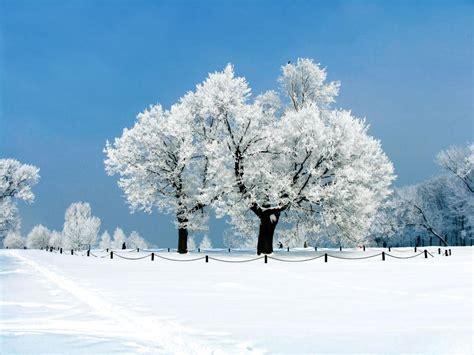 冬天景色图片大全