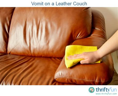 how to clean vomit off couch vomit on a leather couch leather leather couches and