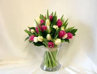 Care For Tulips In Vase by Tulip Vase Flowercare Florist In Melksham Flowers In Melksham Melksham Wiltshire