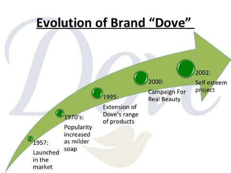 evolution dove caigns dove the evolution of dove as a brand