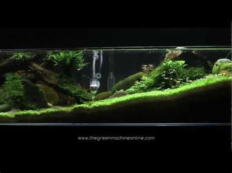 green machine aquascape aquascapes by the green machine playlist