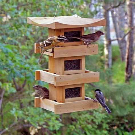 Bird Feeders Designs large capacity bird feeder plans bird cages