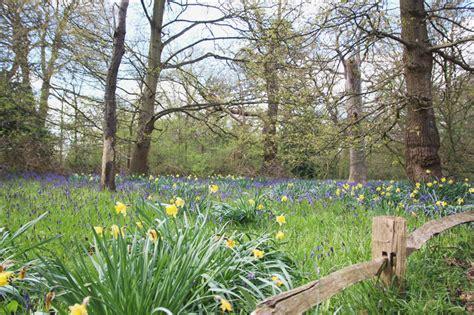 botanical gardens kew kew botanic gardens part 1 april everydayapril everyday